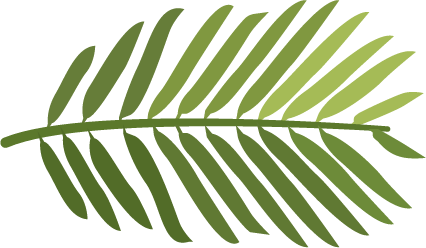 Iden Green Congregational Church Logo - Yew branch